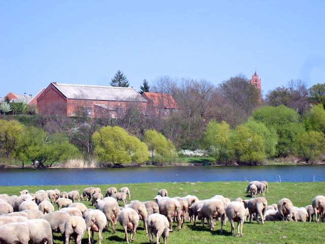 Die Prignitz Landidyll an der Havel