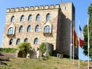 Hambacher_Schloss_2015_08_20_Foto_Elke_Backert (2)